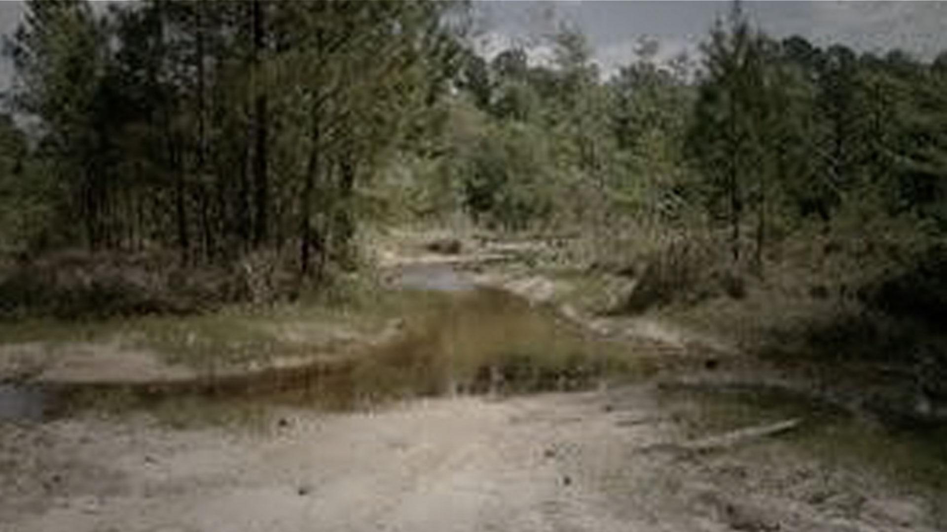 Beaver Mills, Alabama